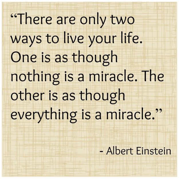 albert einstein thanksgiving quote Funny and Inspiring Thanksgiving Quotes