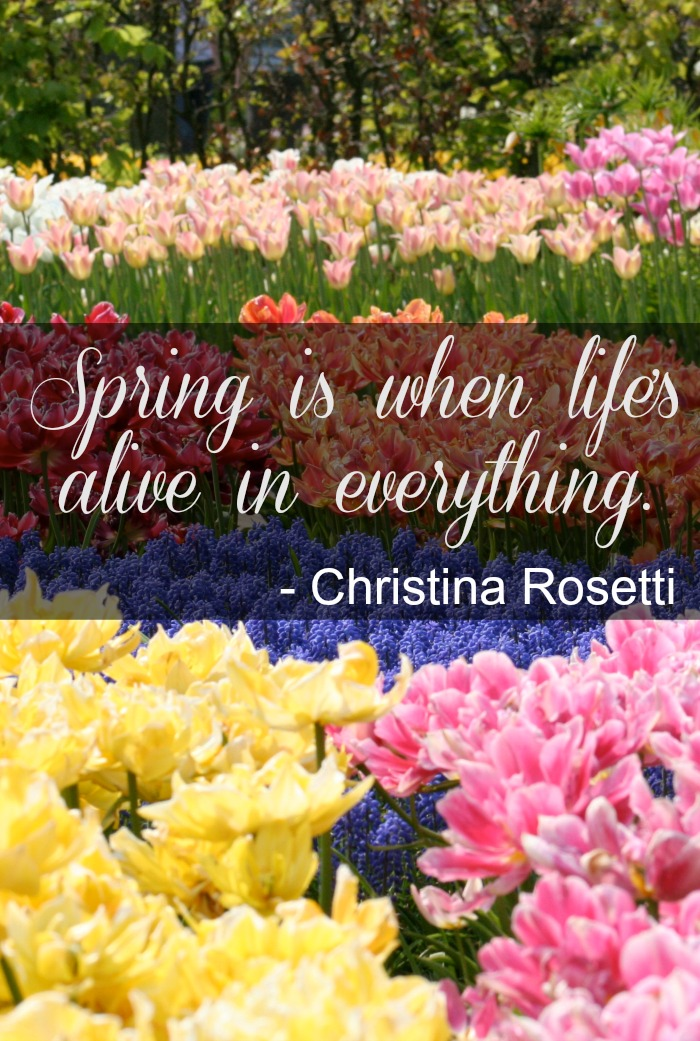 spring is alive quote Inspirational Spring Quotes