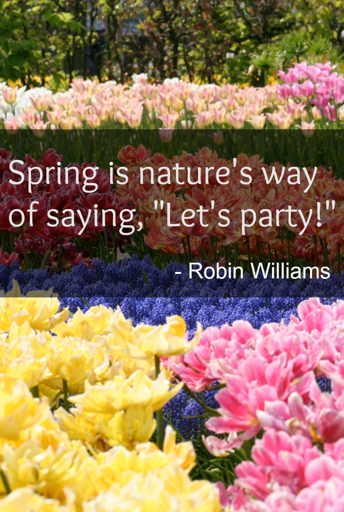 spring lets party quote Inspirational Spring Quotes