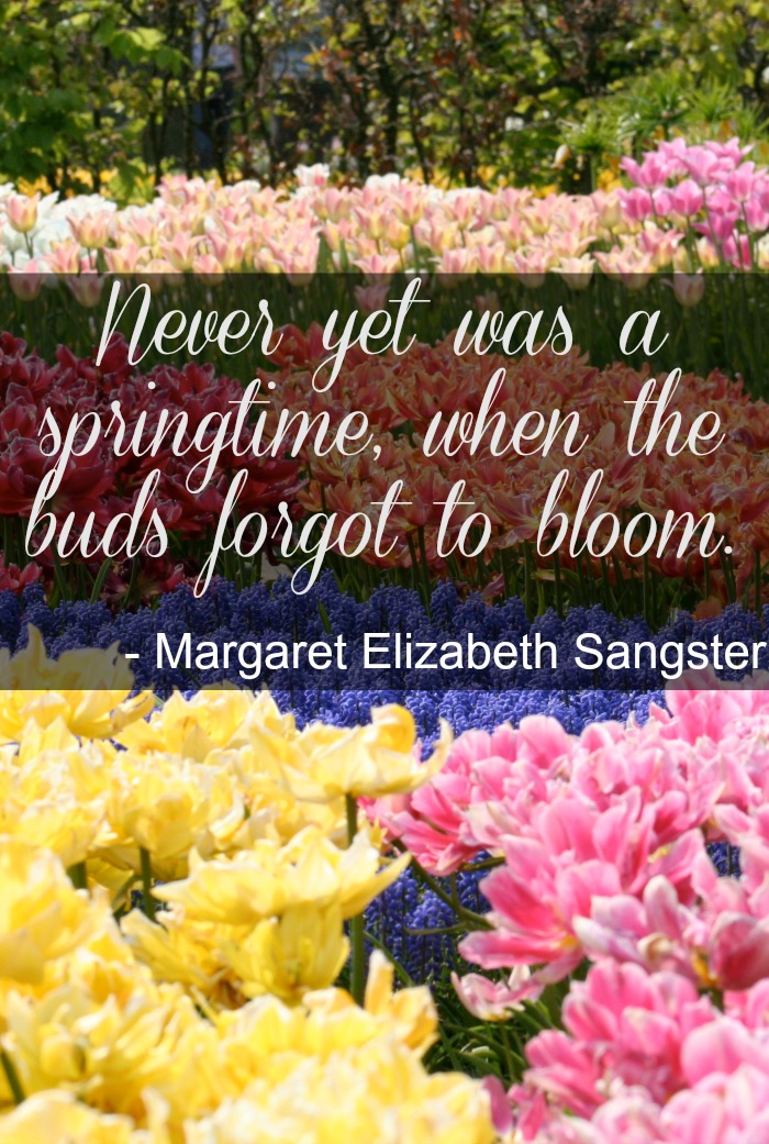 springtime buds bloom quote Inspirational Spring Quotes