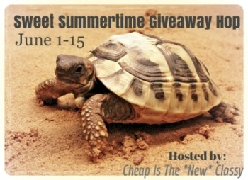 sweet summertime 350 $25 Sears Gift Card Giveaway