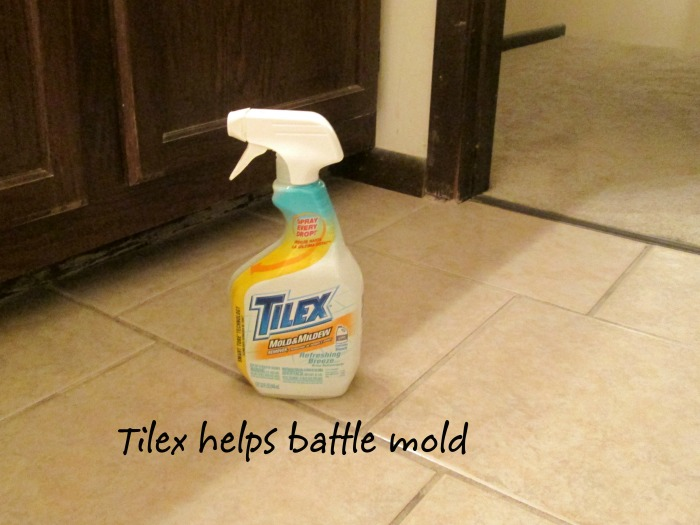 tilex bathroom wm Winning the Mold Battle with Tilex