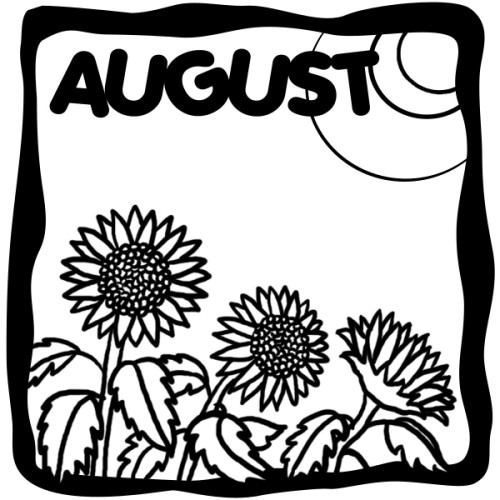 August illustration with sunflowers