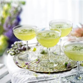 Cucumber Mint Elderflower Champagne Cocktails