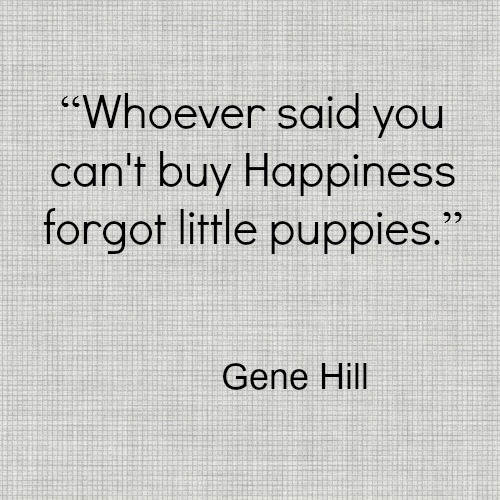Gene Hill Puppy Happiness Dog Quote