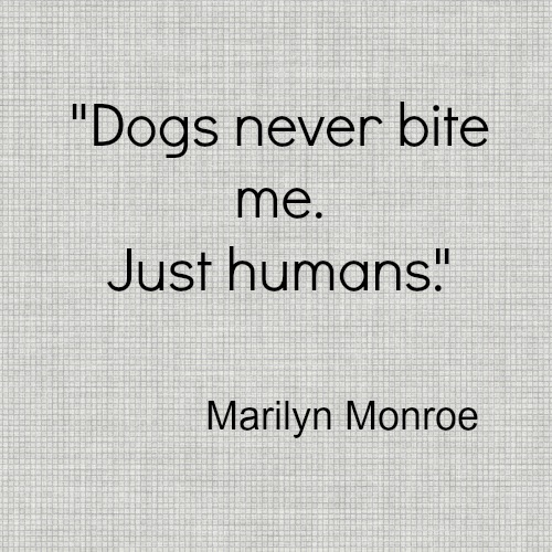 Marilyn Monroe Dog Bite Quote