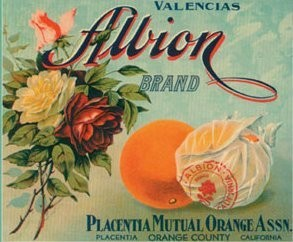 Albion Vintage Fruit Crate Label