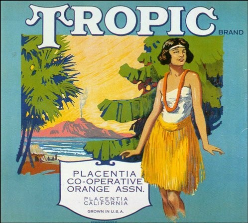 Tropic Vintage Fruit Crate Label