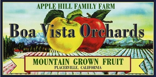 Boa Vista Vintage Fruit Crate Labels