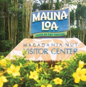 maunaloa2 (300 x 304) Staycation Ideas + A Visit From the Fairy Hobmother