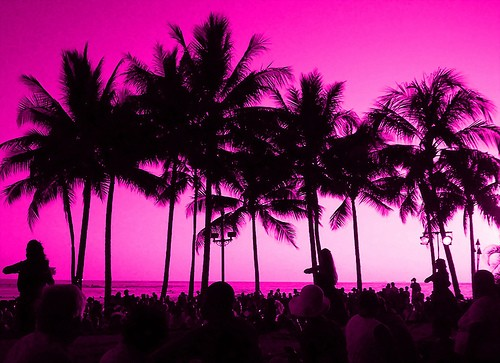 Palm trees at sunset with a pink purple sky