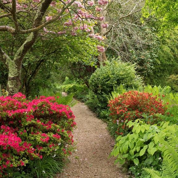 Irish Gardens at Mt Usher